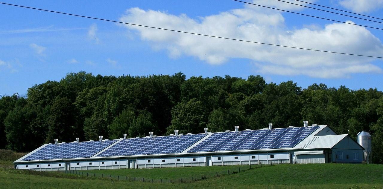 Agronegócio aposta em energia solar para reduzir custos