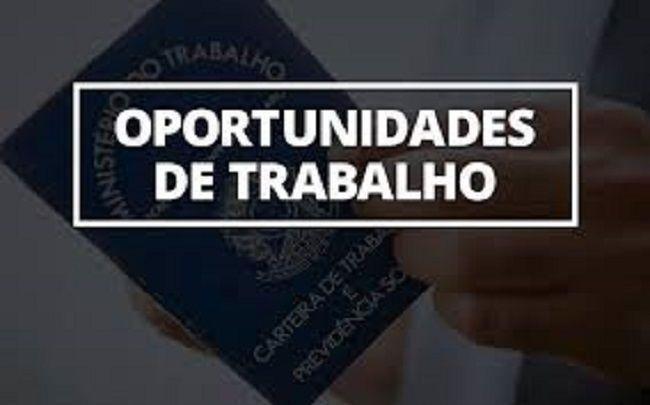Neo oferece 270 oportunidades de emprego em SP e RJ
